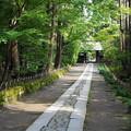 rs1-160926_99_総門への石畳・SH(寿福寺)