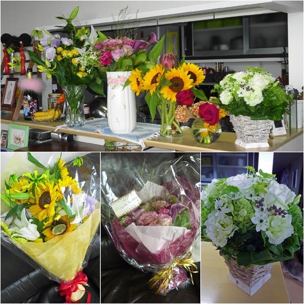 Photos: お花に囲まれて