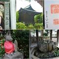 花園神社(上野)