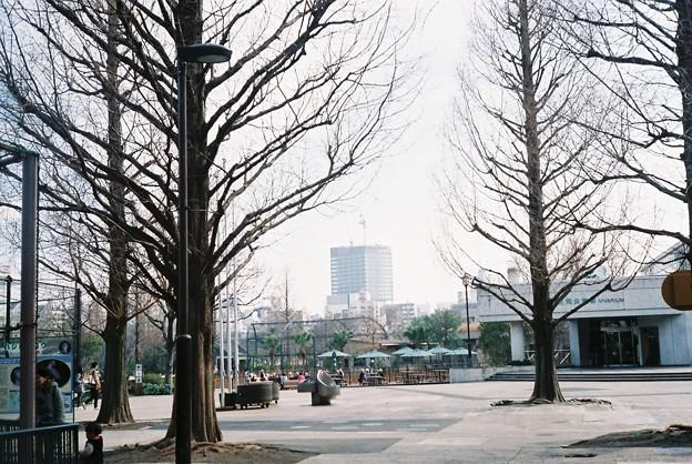 写真: FH000004