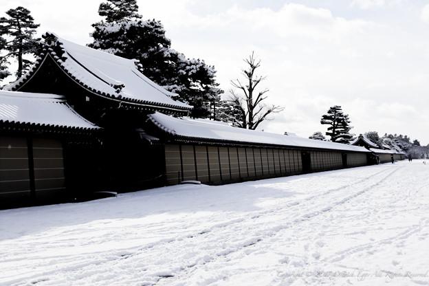 京都御所-0180