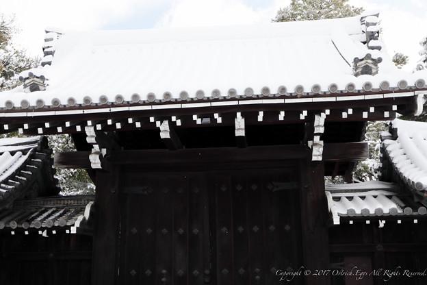 京都御所-0183