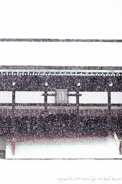 京都御所-0208
