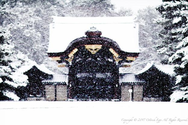 京都御所-0212