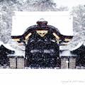 写真: 京都御所-0212