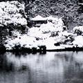 写真: 京都御所-0215