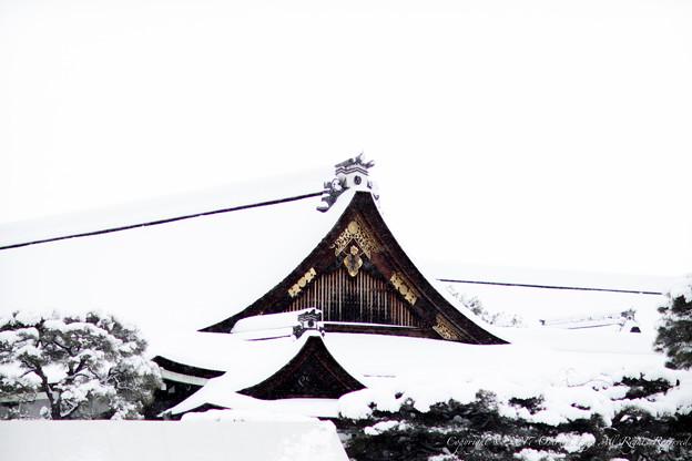 京都御所-0222