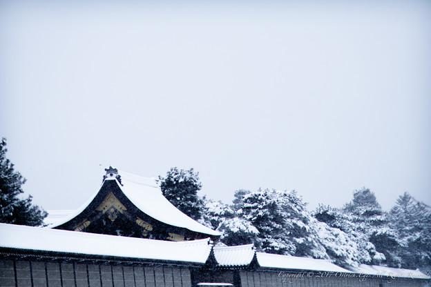 京都御所-0226