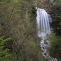 Photos: 140513-134東北ツーリング・湯の又大滝