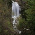 140513-136東北ツーリング・湯の又大滝