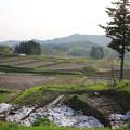 Photos: 140514-2東北ツーリング・四ヶ村棚田