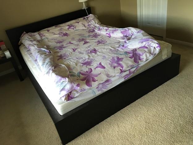 Queen bed frame $20