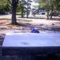 Photos: 岡山城のベンチで作業するこ...
