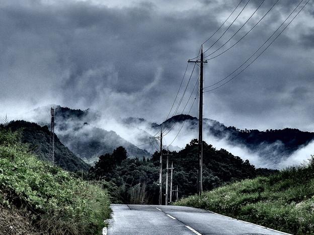 道の向こうは、神の領域