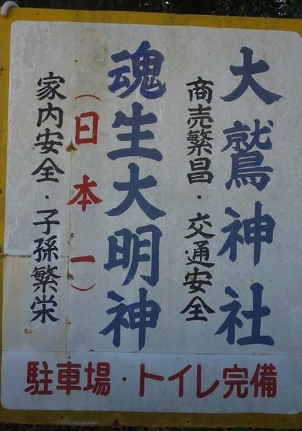 大鷲神社@安食DSC02291