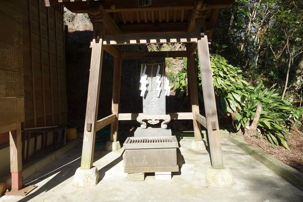 大鷲神社@安食DSC02306