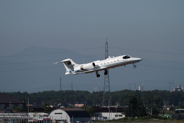 Wingフリフリ Learjet31A