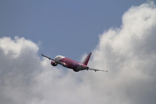 A320 Peach JA805P