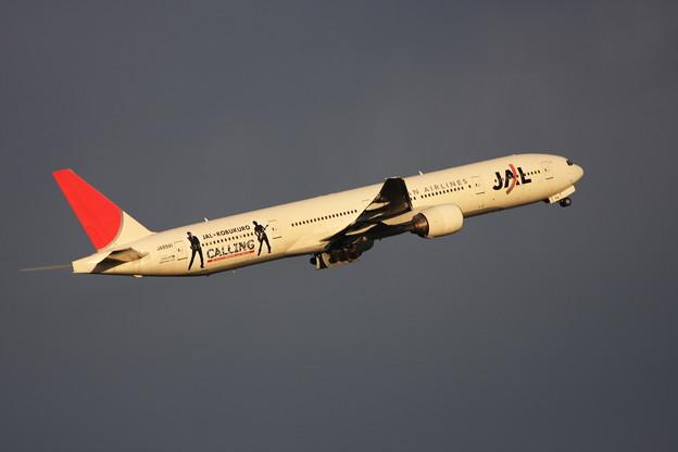 Photos: B777-300 JA8941 JAL 2009.08