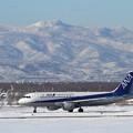 Photos: A320 JA8609 ANA