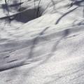 重なり合う雪片 (1)