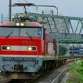 Photos: 配6550レ【EF510-1牽引】
