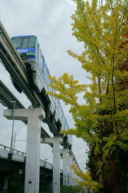 Photos: 大阪モノレール