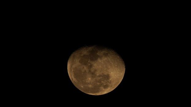 写真: 月齢16.8