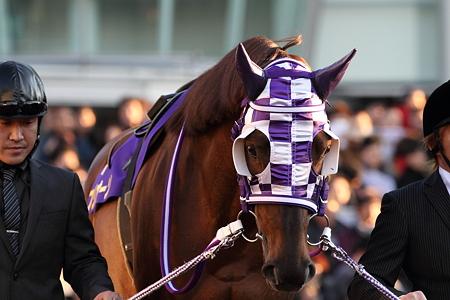 フリオーソ2_2010東京大賞典