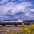 2017 春の撮り鉄 甘木鉄道