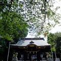 熊野神社にお参り