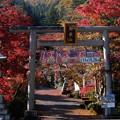 東郷神社に至る