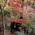 写真: 屋根を赤く染め