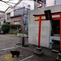 「染井コミュニティ広場」