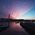 写真: 夕焼け雲が広がって
