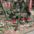 写真: 佐助稲荷神社3