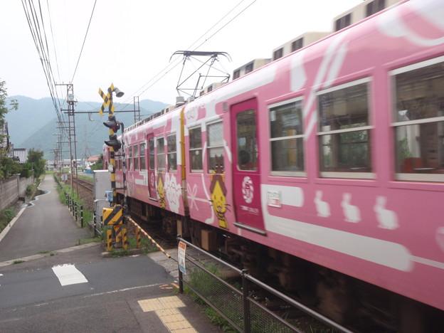 Ichibata-P8040249