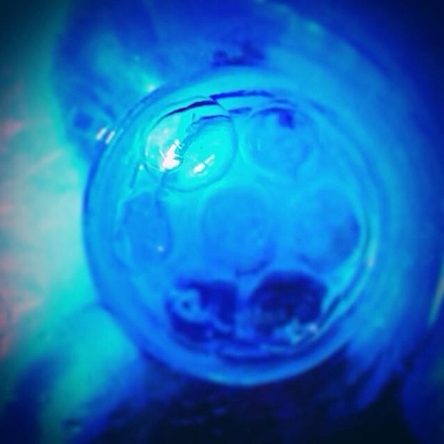 蒼とグラス