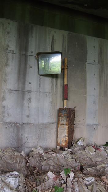 Photos: 半過洞門