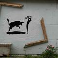 写真: 路地裏の闘牛士