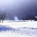 写真: The 冬景色