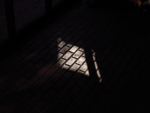 「光と・・・影・・」・・