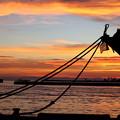 写真: 釧路港の夕日
