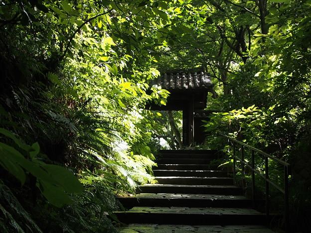 写真: 瑞泉寺
