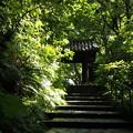 Photos: 瑞泉寺
