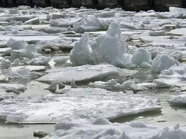 釧路港に来た流氷