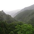Photos: 渓谷