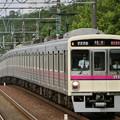 Photos: 京王7000系LED車(7725F) 準特急橋本行き