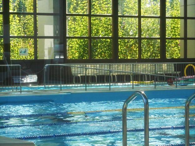 水の恋しい季節~健康作り専用の室内プール~