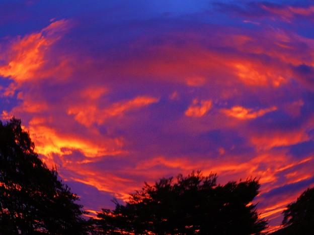 Photos: 夕焼け空が真っ赤っか